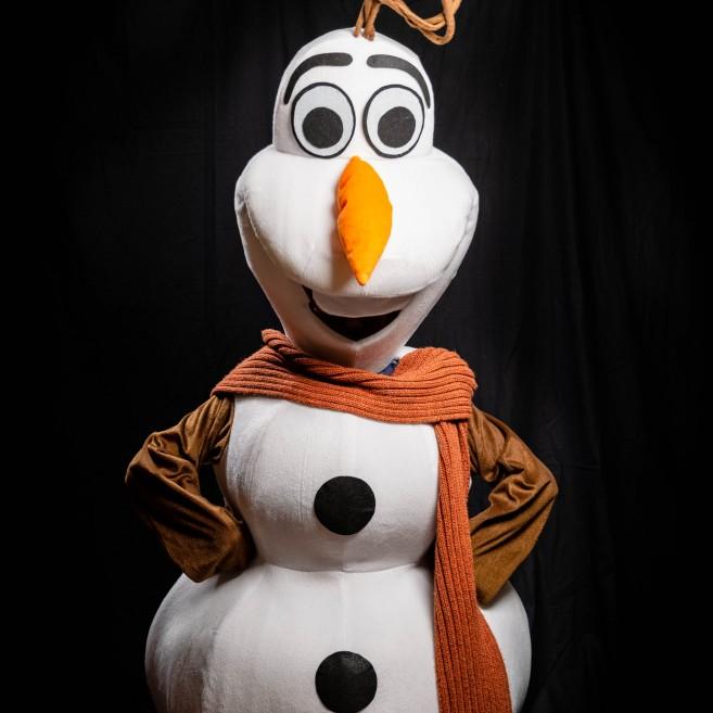 Cнеговик