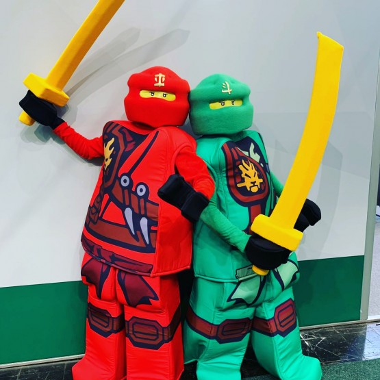 Ninja Party