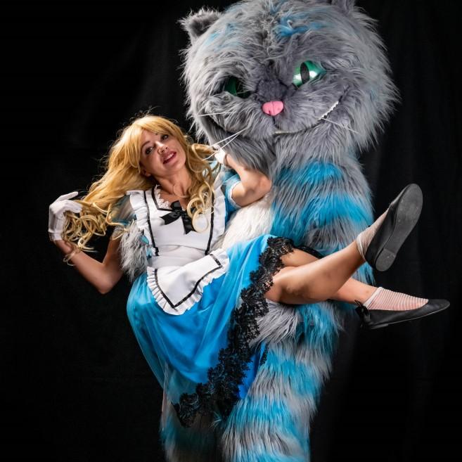 Алиса и кот в стране чудес