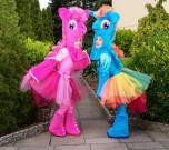 Пони и Единорог