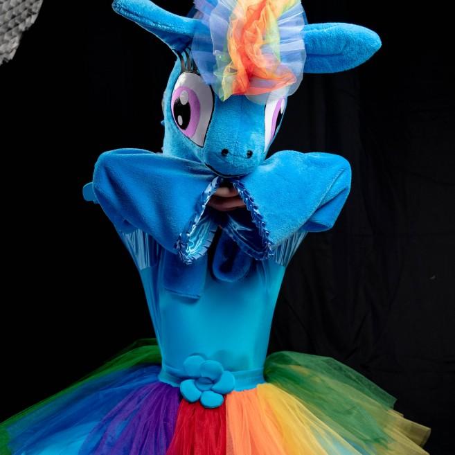Pony und Einhorn Party